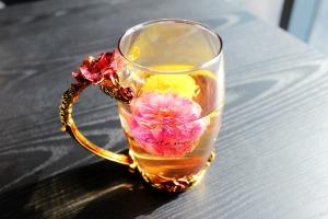 tea-rose-corolla-1871835_960_720